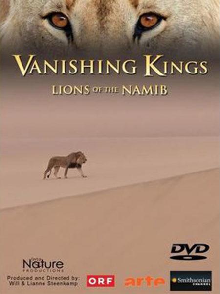 Vanishing Kings Mischtonmeister, Sound Designer, Sound Editor, Blautöne - Audiopostproduktion Tonstudio Wien