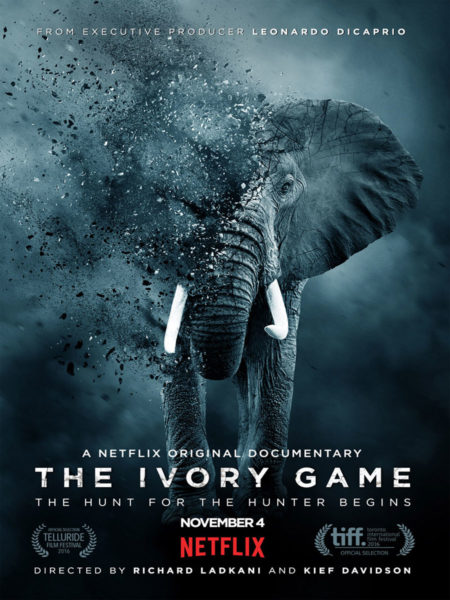 The Ivory Game Blautöne - Audio Postproduktion Tonstudio Wien