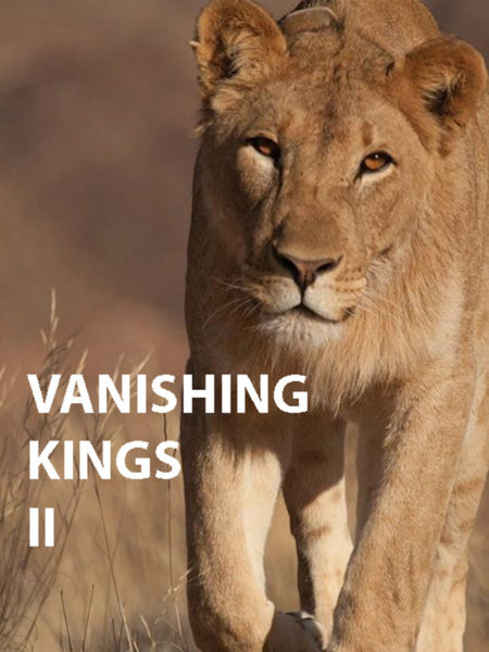 Vanishing Kings - Audiopostproduktion by Blautöne Motion.Picture.Sound | Tonstudio Wien